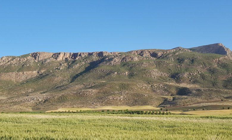 کوهی در استان لرستان